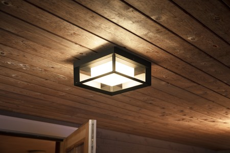 Hue Outdoor Econic Ceiling