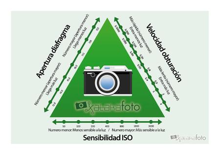 Triangulo Exposicion