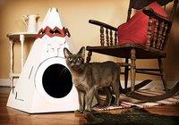 Un refugio para gatos que fuman la pipa de la paz