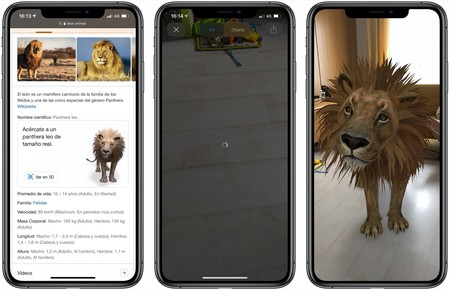 Animales 3d Google Iphone