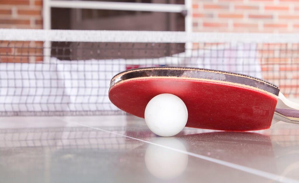 7 mesas de ping pong, con medidas reglamentarias, a partir de 170 euros en Amazon, eBay y Decathlon