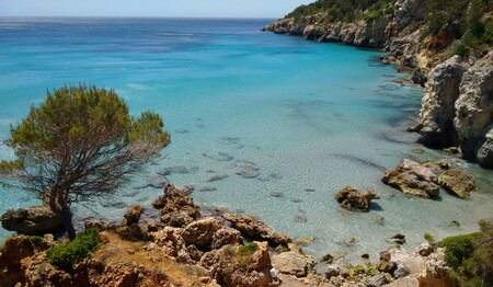 Binigaus Playas Peoople