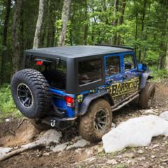 Foto 7 de 19 de la galería jeep-wrangler-project-trail-force en Motorpasión