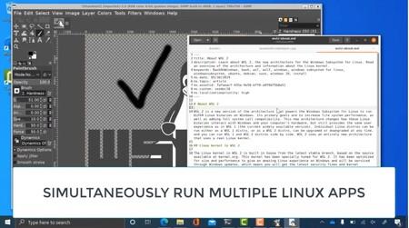 Simultaneas Linux