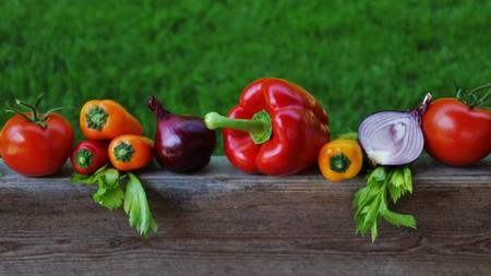 dieta rica en proteinas vitaminas y minerales