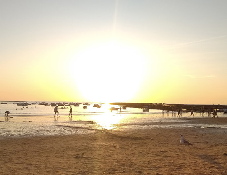 Sol Playa Redmi 7a