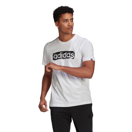 Camiseta Manga Corta Adidas Fitness Graphique Blanco