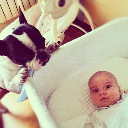 Adivina quién... es el papá del bebé y dueño del perro de la foto