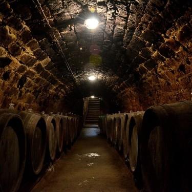Salen a subasta las tres botellas de vino más antiguas del mundo (y podrían venderse a más de 50.000 euros)