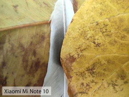 Xiaomi Mi Note 10 Macro Dia 01