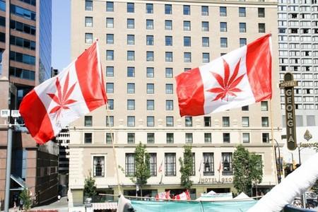 canamo-canada-cannabis.jpg