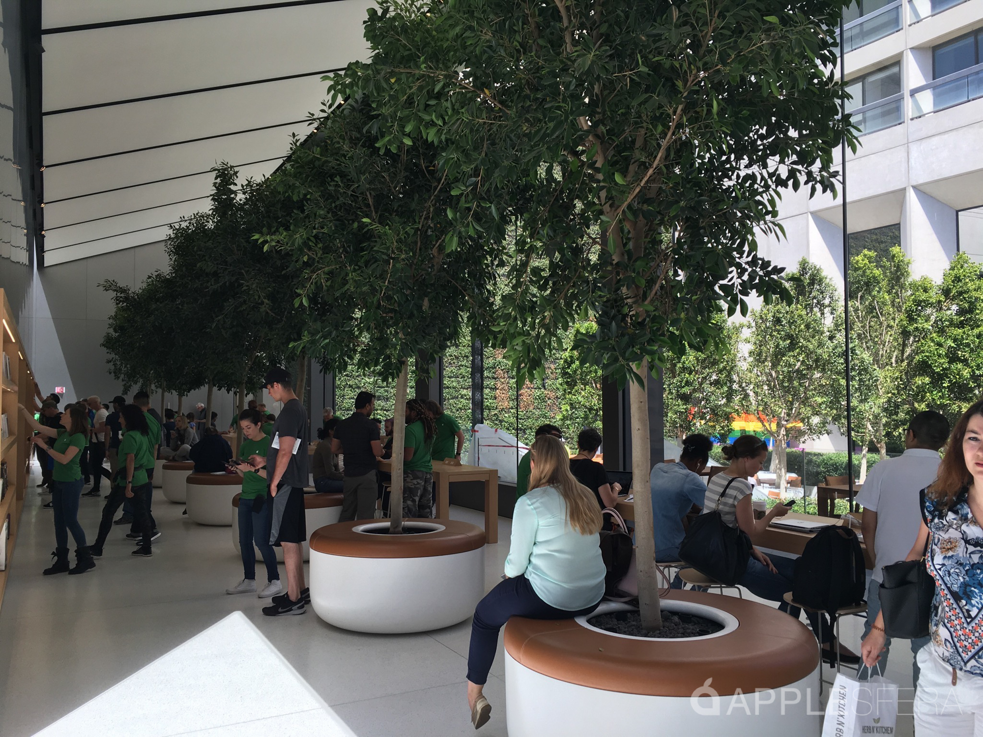 Foto de Apple Store Union Square & WWDC16 Moscone Center (12/16)