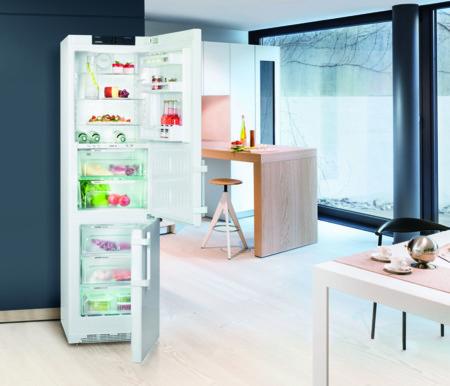 Gastar un poco más en un frigorífico te ahorrará dinero durante años