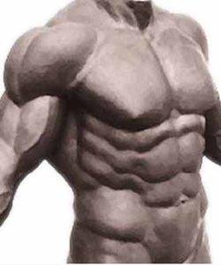 Exceso de masa muscular y riesgo cardíaco