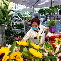 Ramos en la basura, viveros cerrados y 400 millones menos: el golpe del covid al sector de la flor