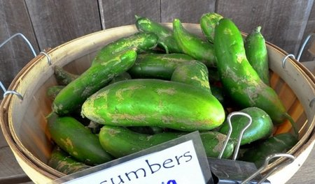 Aproveche la 'crisis del pepino' para comer más verduras