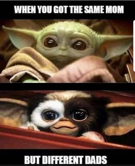 Meme Gremlins Yoda Same Mom