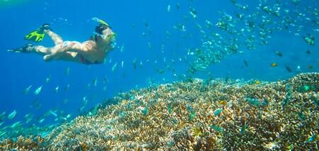 Protege tu piel y cuida de los ecosistemas acuáticos con los protectores solares de Photoderm