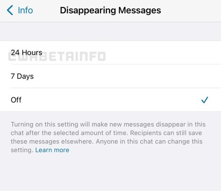 24 Hours Disappearing Messages Ios 768x663