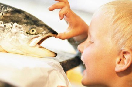 Los beneficios del Omega 3 en niños hiperactivos