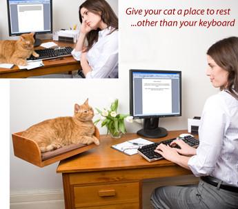 Aleja a tu gato del teclado