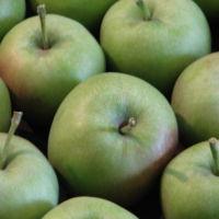 ¿Cómo deben tributar Apple y las otras multinacionales?