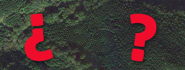 No, no los alienígenas no han plantado árboles en círculo: han sido los japoneses y es un experimento de casi 50 años