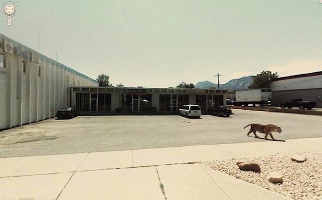 Foto de Google Street View fotos por Jon Rafman (28/32)