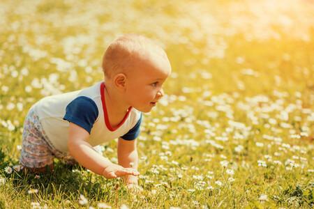 Los primeros desplazamientos del bebé: a la conquista de su autonomía