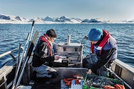El fitoplancton del Ártico parece que puede resistir al cambio climático
