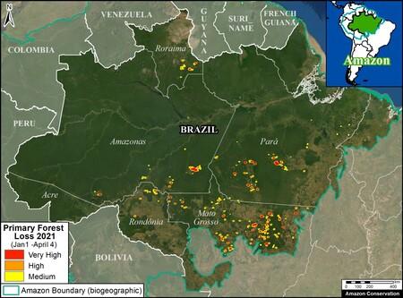 Pérdida de bosques en la Amazonía brasileña durante el primer cuatrimestre de 2021 | MAAP