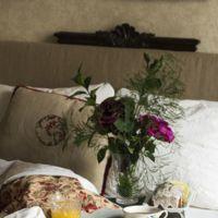 Paseo por la gastronomía de la red: doce recetas de bizcochos para endulzar nuestros desayunos y meriendas