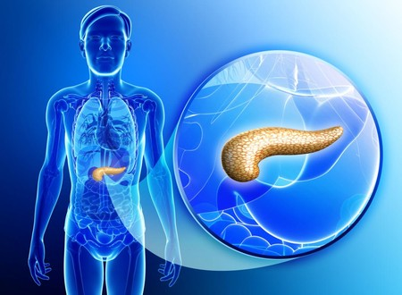 Este estudiante mexicano está buscando crear un páncreas bioartificial