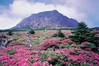El Parque Nacional  Hallasan en Corea del Sur lidera un ranking de los mejores espacios verdes de Asia