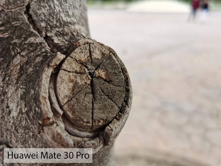 Huawei Mate 30 Pro Macro Dia 02
