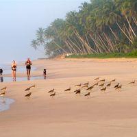 Los mejores ejercicios de cardio que puedes hacer en la playa