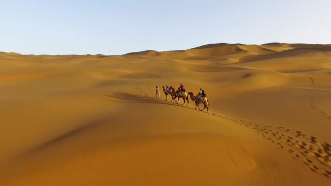 Xinjiang Desert 1