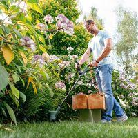 25% de descuento en Bosch DIY: herramientas para hogar y jardín rebajadas en Amazon