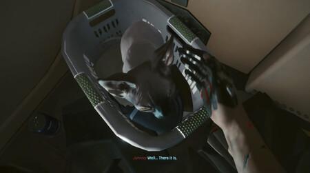 Cyberpunk 2077: cómo conseguir el gato mascota para tu apartamento