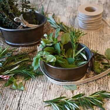Cómo cultivar hierbas aromáticas en casa