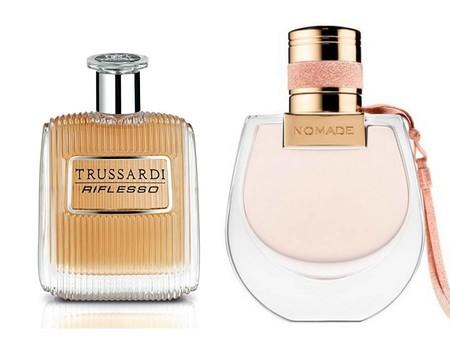 Academia Del Perfume Mejor Diseno