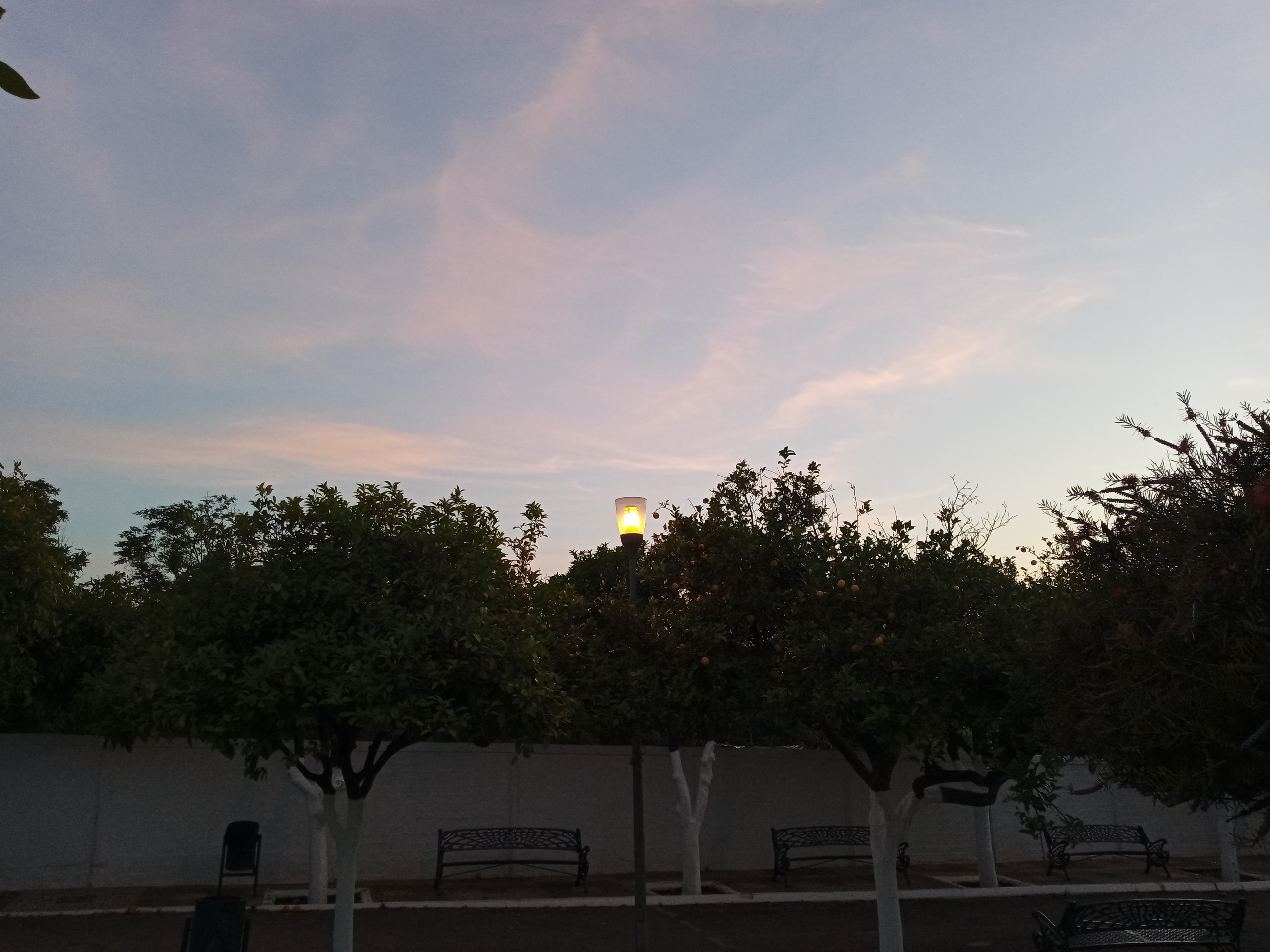 Foto de Más fotografías con el Sony Xperia L4 (23/42)