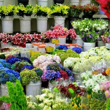 El mercado flotante de flores decora La Marina de Valencia y sus talleres inspirarán tu primavera más casera