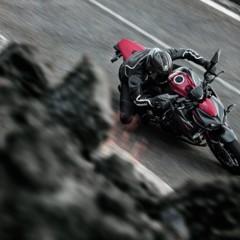 Foto 16 de 20 de la galería kawasaki-z800-y-z1000-sugomi-special-edition en Motorpasion Moto