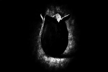 'Alien: Covenant': el primer y brutal tráiler que nos lleva de vuelta al terror espacial de 'Alien'
