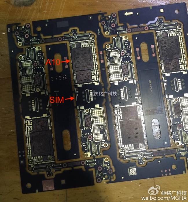 Placa madre del iPhone 7