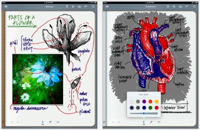Notas iPad