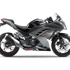 Foto 6 de 58 de la galería kawasaki-ninja-250r-2013-cambio-radical-para-la-mas-pequena-de-la-familia en Motorpasion Moto
