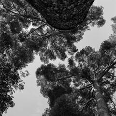 Foto 22 de 31 de la galería fotografias-leica-q2-monochrom en Xataka Foto