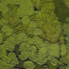 Foto 8 de 14 de la galería fondos-de-naturaleza-1 en Xataka Android